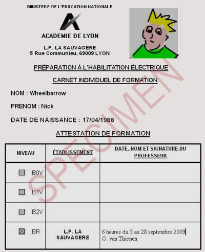 Habilitation electrique B1 B2 BR BC BE: alertis electrique Lyon Rhone